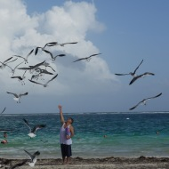 I like this man feeding the seagulls on the beach